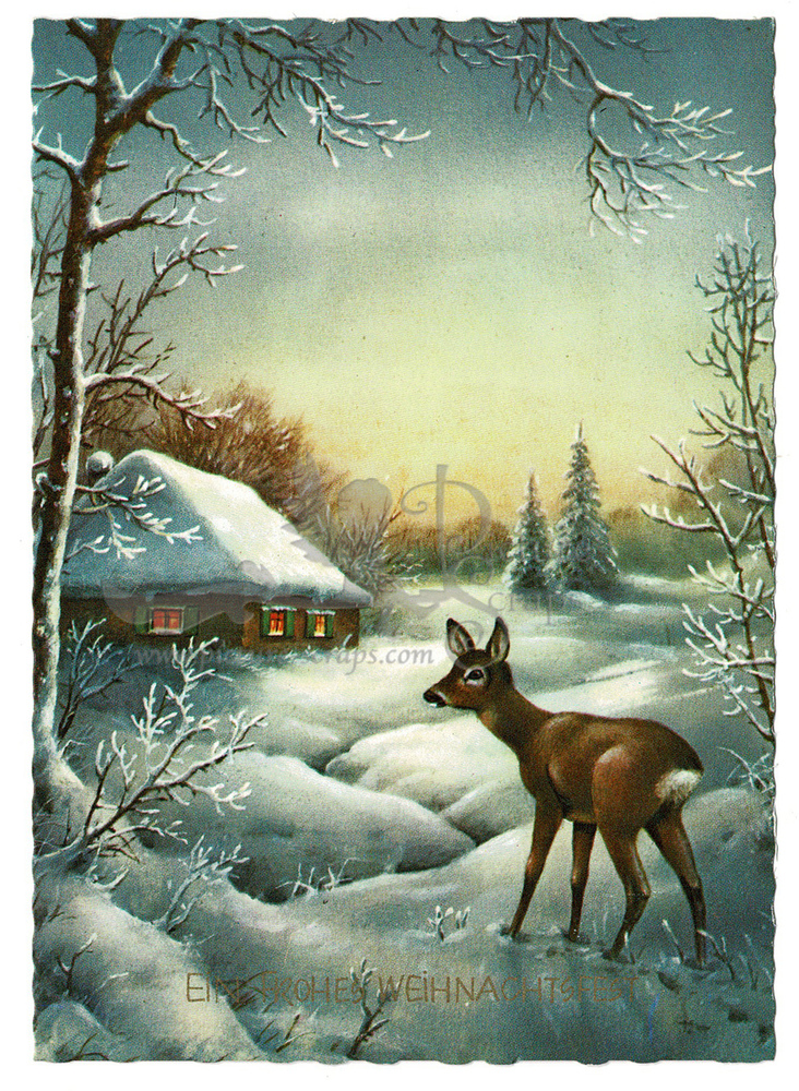 Large postcard haco deer a