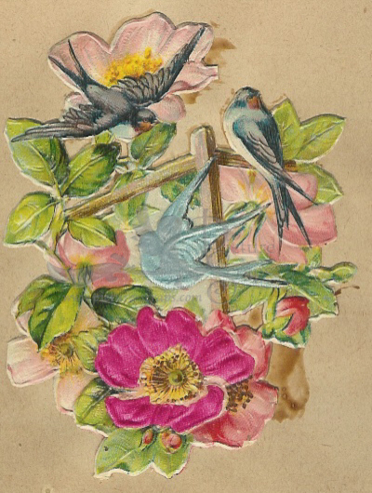 Large silk scraps  birds and flowers1927