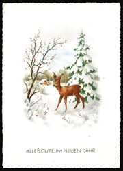 Small postcard haco  0370 a rural winter deer