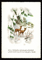 Small postcard haco  0370 b winter rural deers