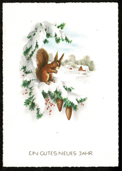 Small postcard haco 0375 squirrel