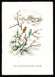 Small postcard haco 0376 b winter landscape birds